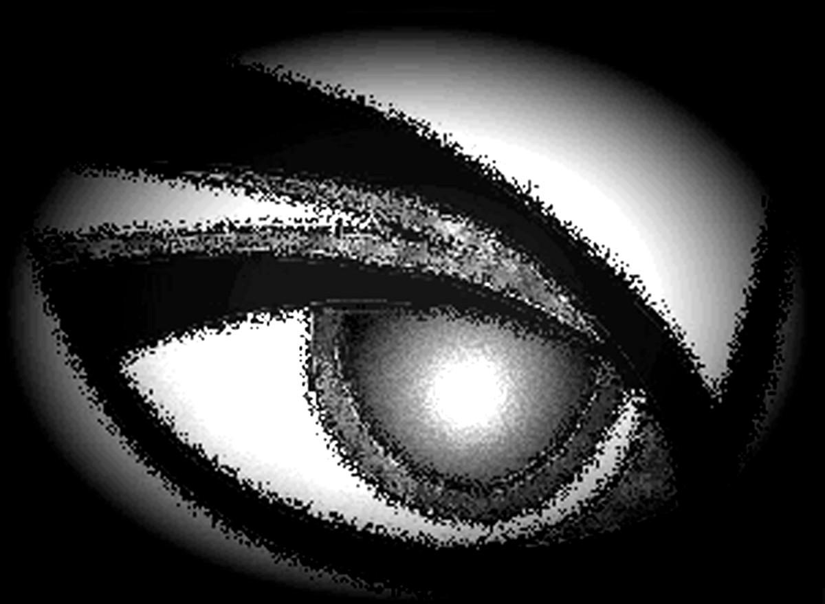 9. Auge